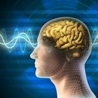 Brain-waves-Sinus-Waves
